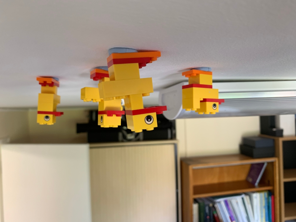 Four Lego ducks stuck to the ceiling of my office.